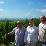 La mer d\'Azov, et quelques vignes devant
