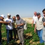 Rencontre inoubliable à l\'Oued